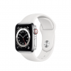 Apple Watch Series 6 Stainless Steel Case with Sport Band